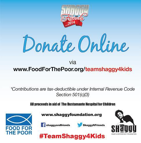 donate to shaggy foundation