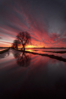 Flooded Somerset