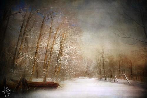 ~~~~  winter romance ~~~~