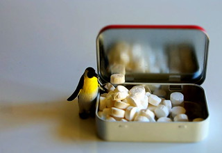 Penguin ponders pilfered peppermints