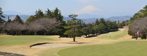 2 bentgrass greens with Mt. Fuji in background