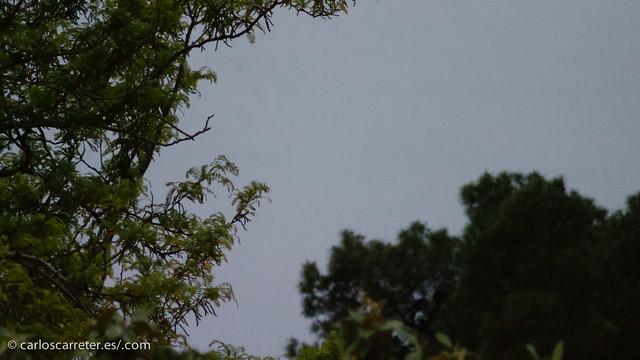 Detras de las nubes, un eclipse