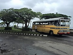 Suva Public Transport