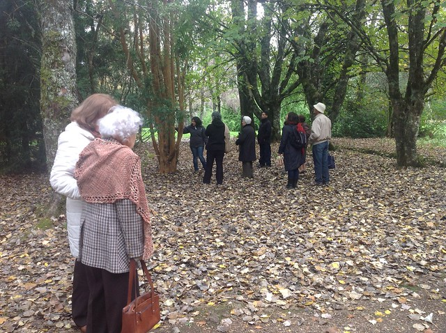 Celebración en Jardín Botánico de la UACH, Valdivia.