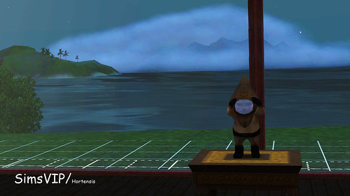 Mr Mariner Gnome
