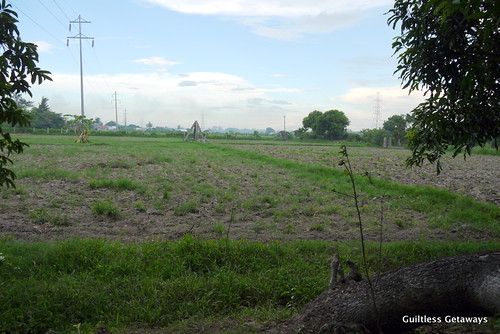 prado-farms-pampanga.jpg