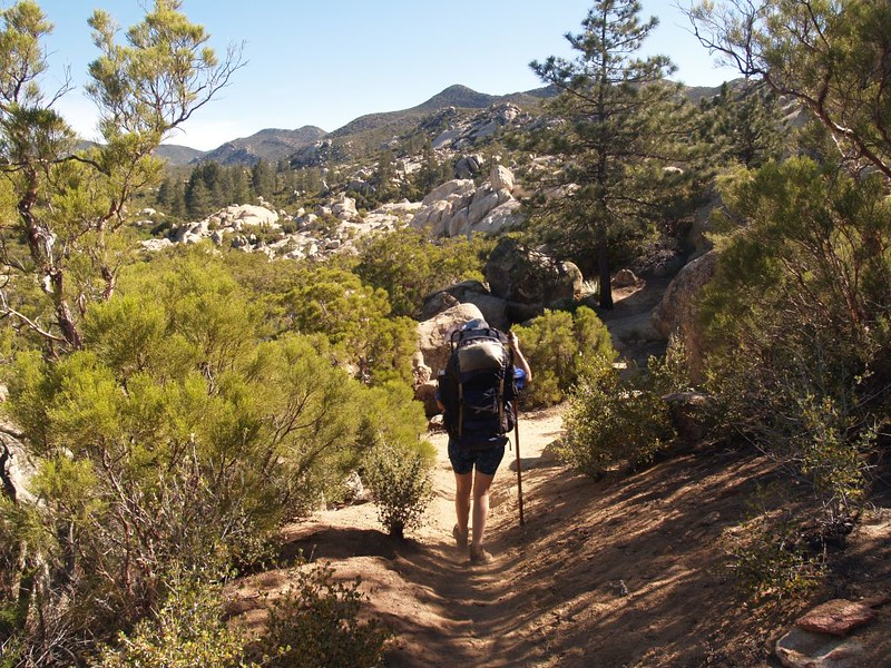 Heading north into Penrod Canyon on the PCT