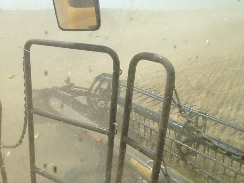 Z Crew: Windy and Dirty in the Field