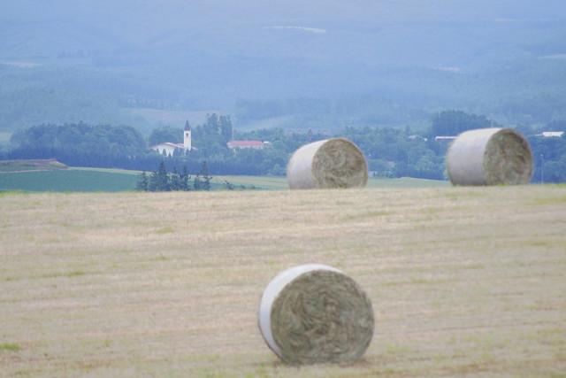牧草ロールのある風景1