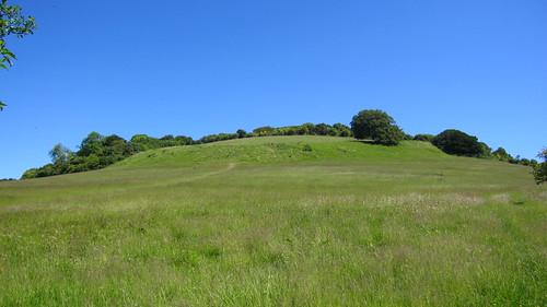 Hollingbourne hillfort