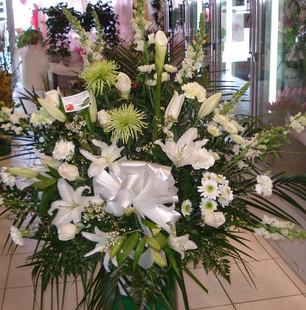 Farah Florist W-A-7a.  $120