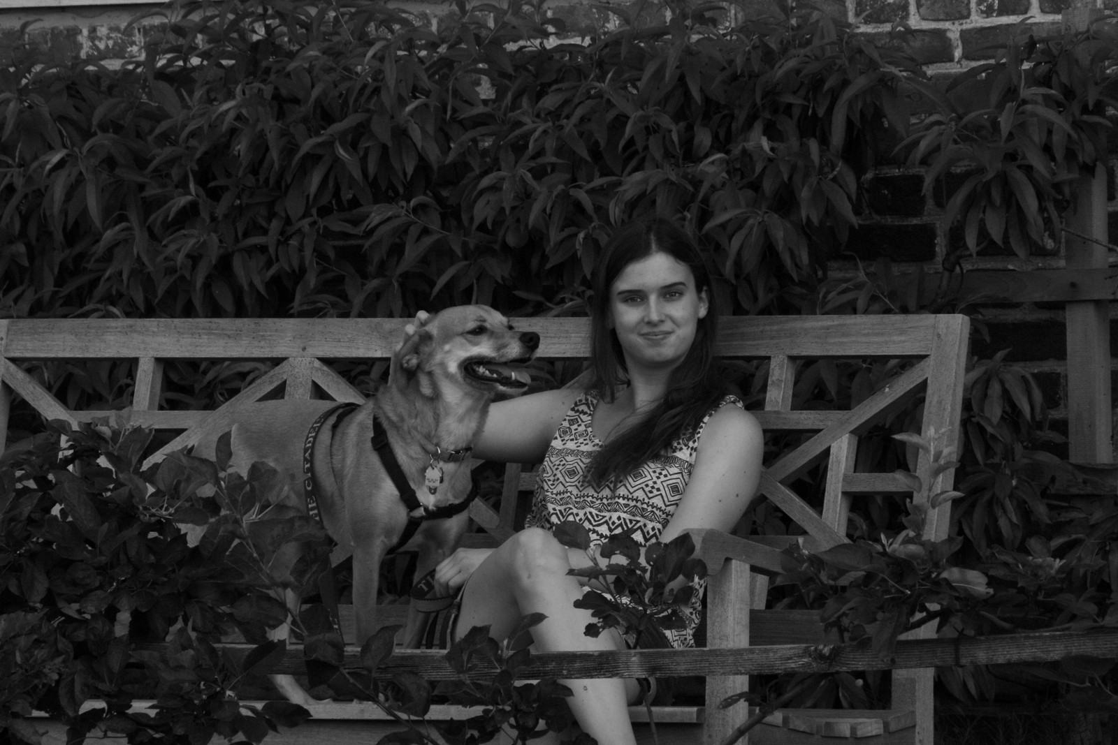Logan Maya Black and White Mount Vernon