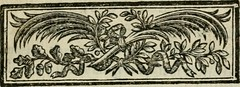 """Image from page 8 of """"Oeuvres de J.J. Rousseau"""" (1791)"""