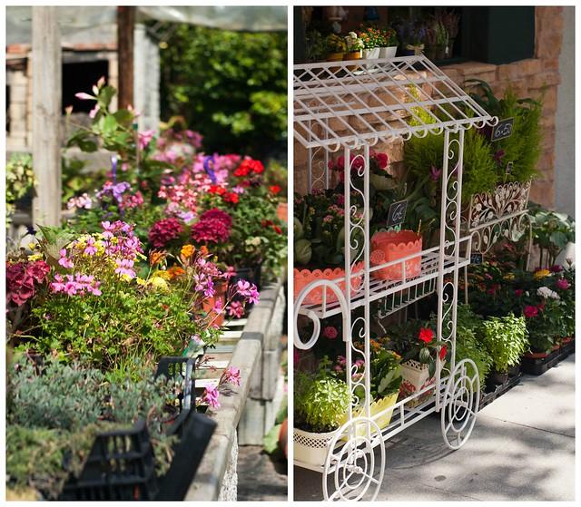 flores Collage