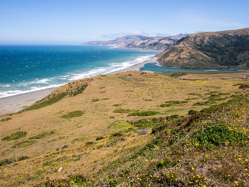 Looking north along the Lost Coast