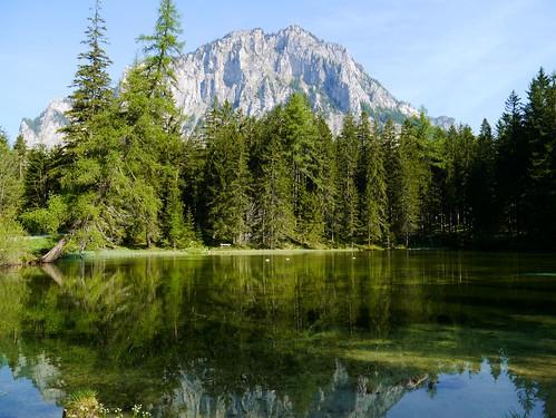 reflection green water pond wasser surface grün teich spiegelung steiermark reflektion styria mirroring oberfläche pribitz tragös oberort