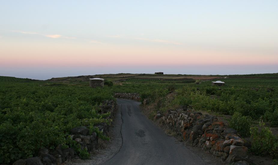 Pantelleria_75