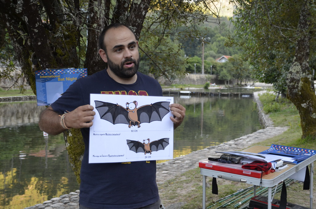 Noite dos Morcegos