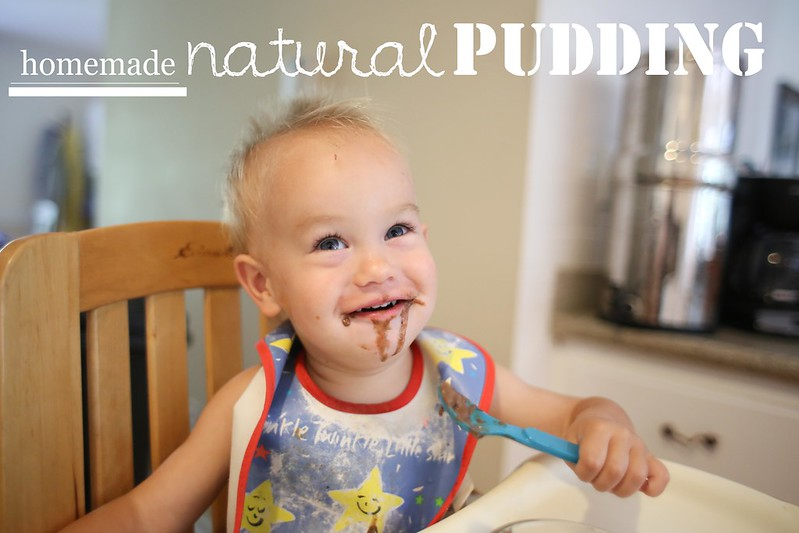 Homemade Pudding for Kids | dreawood.com