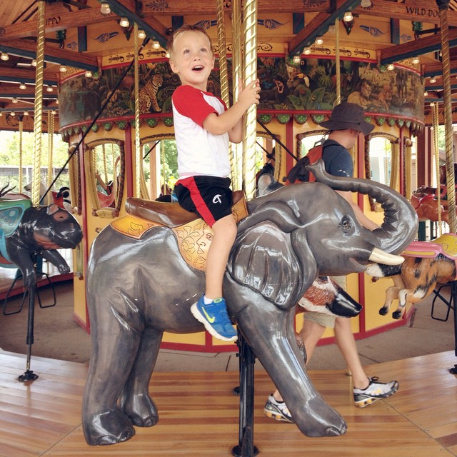 No school today, a nearly empty zoo and someone's favorite carousel animal was free! I'd give today an A+! #kc #kczoo #carousel #elephant #tater