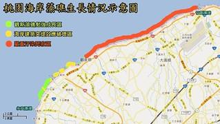 桃園海岸藻礁生長情況示意圖。(圖片來源:桃園在地聯盟)