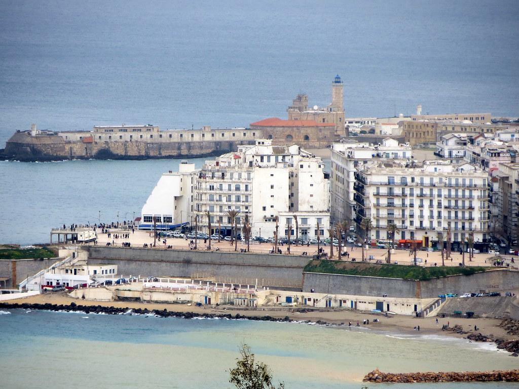 Alger 599