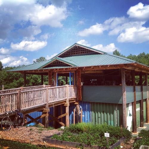 Hidden Gem: Honeysuckle Tea House in Chapel Hill