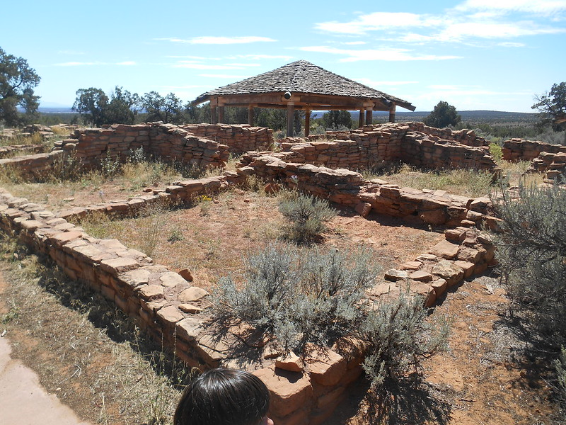 Mule Canyon Ruins, Hwy 95 (7)