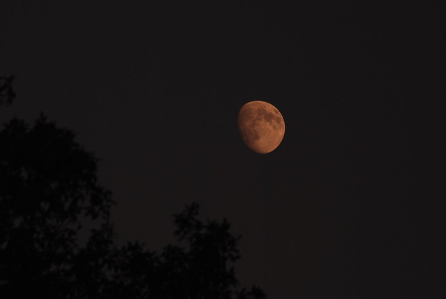 Moon rise today @ Acton, MA