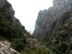 Vers la fin du contournement de la Grande Cascade : l'aval du Pulischellu et Punta di a Calancona