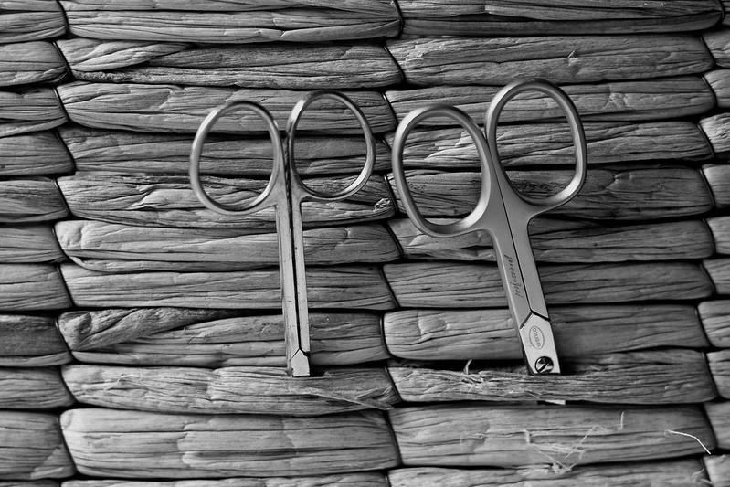 """155 / 365 """"scissors"""""""