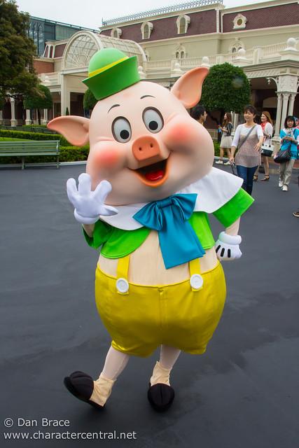 Fifer Pig