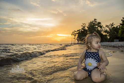 sunset baby sun playing beach water girl toddler louisiana child shore mandeville lakepontchartrain fontainebleaustatepark northshoreweddingphotographer tyalexanderphotography sunlightlgoldenlight