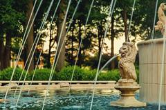 Regent University Fountain