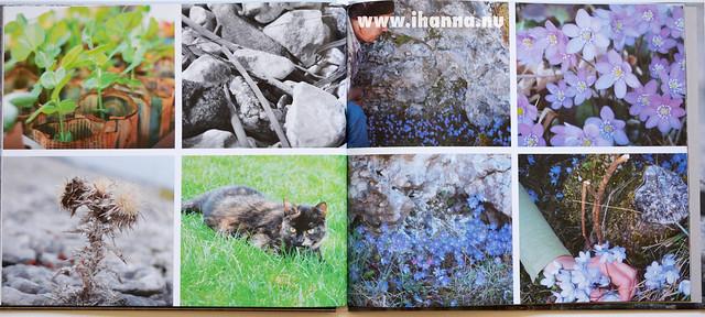 Nature - Blurb Book Vyer från Gotland