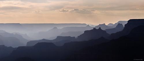 Grand Canyon Grey Levels