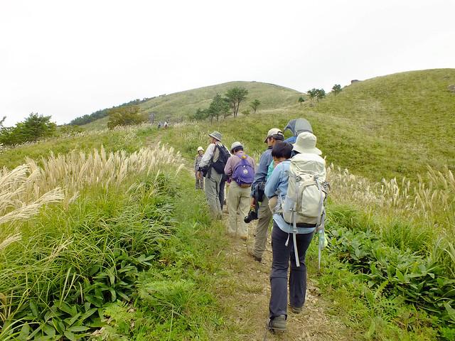 草原が広がる登山道を歩く.風が吹くたびに揺れるススキの姿と音から,秋の風情が感じられた.