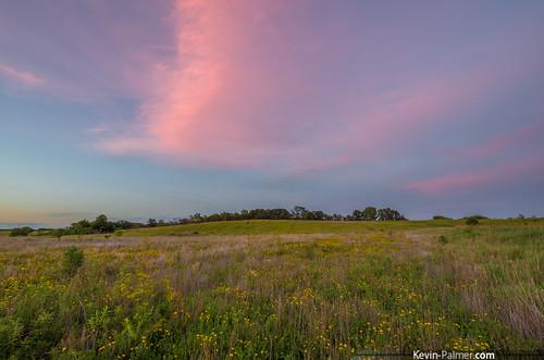 pink flowers sunset summer sky green field june yellow evening colorful dusk iowa wildflowers afterglow keosauqua lakesugema samyang10mmf28