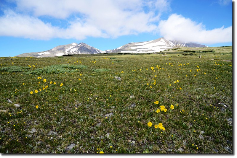 James Peak and Mount Bancroft from theTundra 1