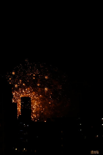 1/4 Sumidagawa Fireworks Festival 2014-11