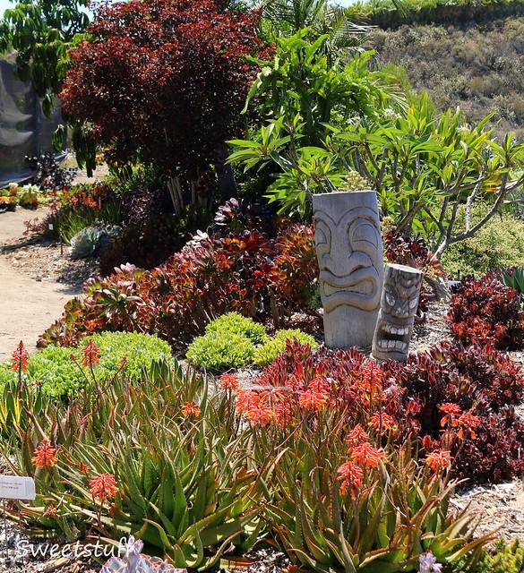 Waterwise Botanicals garden