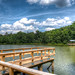 Lake Herrick, UGA, Athens, GA by Rhett Jefferson