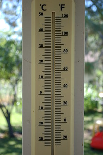 July 10 Temperature