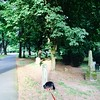 Friday in the cemetery with Finn #portland #oregon
