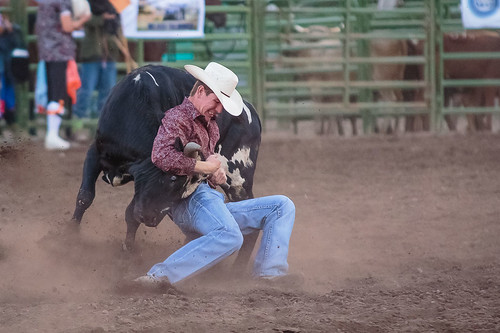 Rodeo -8170