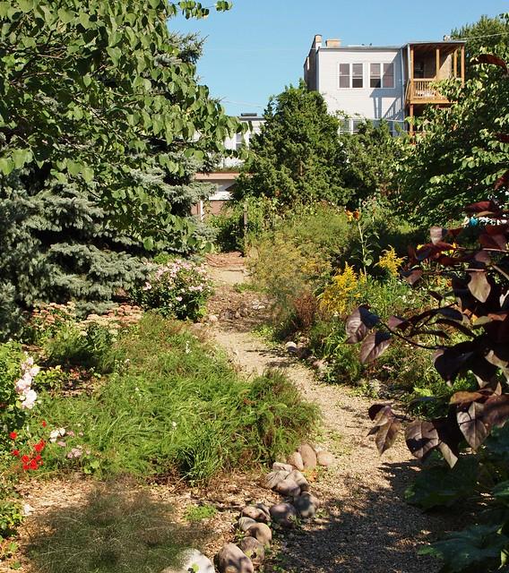 Neighbors' Garden