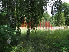Denver Botanic Gardens Colorado