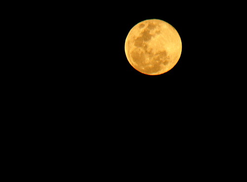 IMG 9993 The Full Moon