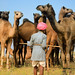 The Pushkar Fair..