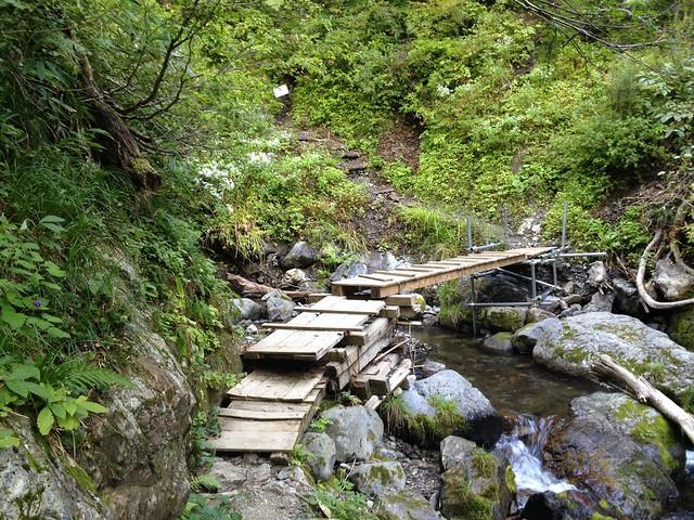 夜叉ヶ池 登山道 木橋